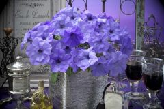 Evening Scentsation™ (Petunia/multiflora/pelleted)
