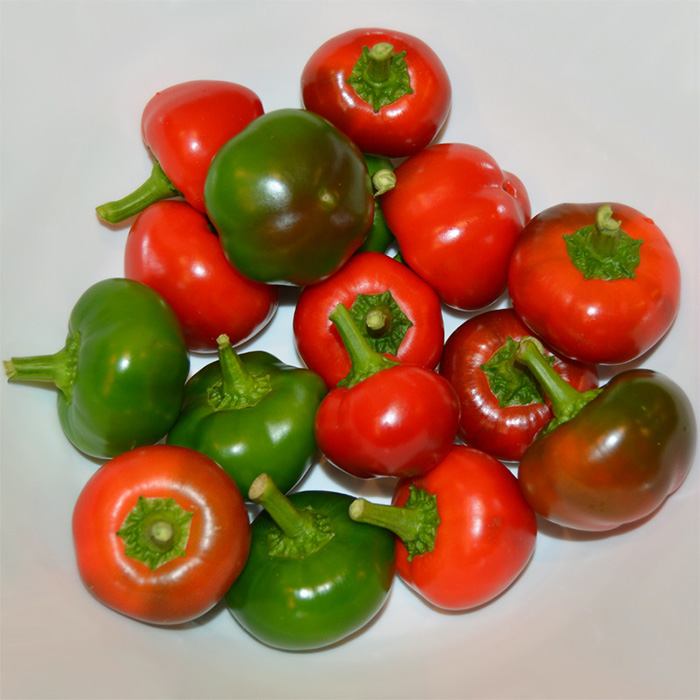 Flat Cherry Hot (Hybrid Hot Pepper)