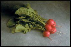 Cherriette (Hybrid Radish)