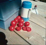 Lunch Box VF (Hybrid Plum Tomato)