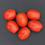 Plum Regal VFF/TSWV (Hybrid Plum Tomato)