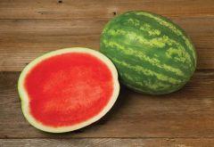 Excursion (Watermelon/triploid)
