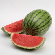 Premium (Triploid Pollinator Watermelon)