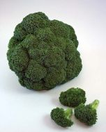 Lieutenant (Broccoli)