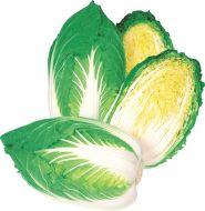 Jazz (Cabbage/Chinese Napa)
