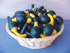 Koshare Yellow (Small Gourd)