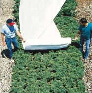 Floating Row Cover - 64 in x 50 ft