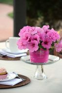 Easy Wave Pink Passion (Petunia/multiflora/pelleted)