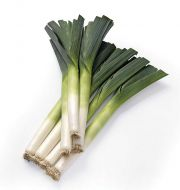 Krypton (Leek/hybrid/pellets)