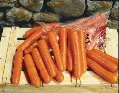 Bolero (Carrot/Berlicum/pellets)