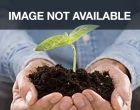 Greencrop (Green Beans Bush/flat/untreated)