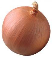 Vision (Onion/Spanish/hybrid)