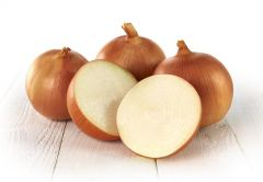 Catskill (Onion/main season)