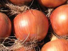 Oloroso (Onion/Spanish/hybrid)