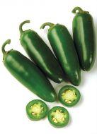 Dulce (Hybrid Hot Pepper)