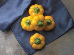 Yes to Yellow (Mini Yellow Pepper)