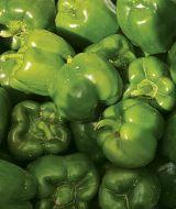 Playmaker (X10R®) (Hybrid Sweet Pepper)