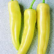 Inferno (Hybrid Hot Pepper)