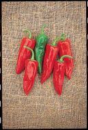 Chili Grande (Hot Pepper)