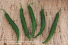 Crackle (Hybrid Pepper/hot)
