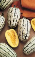 Delicata (Sweet Potato Squash)