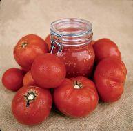 Bush Beefsteak (Bush Tomato)