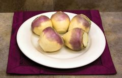The Laurentian (Rutabaga)