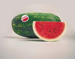 Sangria (Watermelon/diploid)