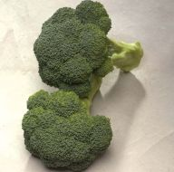 Diplomat (Broccoli)