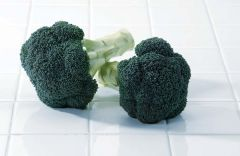 Green Magic (Broccoli)