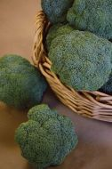 Castle Dome (Broccoli)