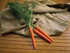 Olympus (Carrot/hybrid/early)