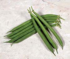 Desperado (Green Beans Bush)