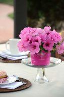 Easy Wave Pink Passion (Petunia/multiflora/pelleted)