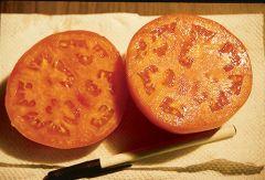 Glamour (Bush Tomato Pellets)