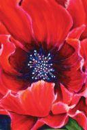Garden Flag - Painted Poppy