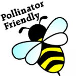 Pollinator Friendly Flowers